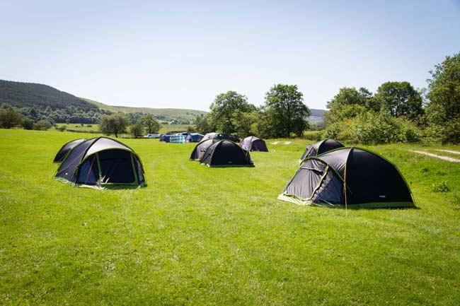 Tents Camping Llyn Rhys Campsite